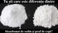 diferenta dintre bicarbonat de sodiu si praf de copt
